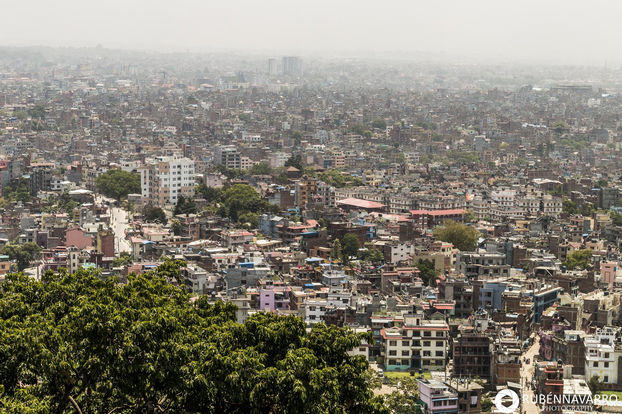 Visitar Katmandú - Templo de los monos