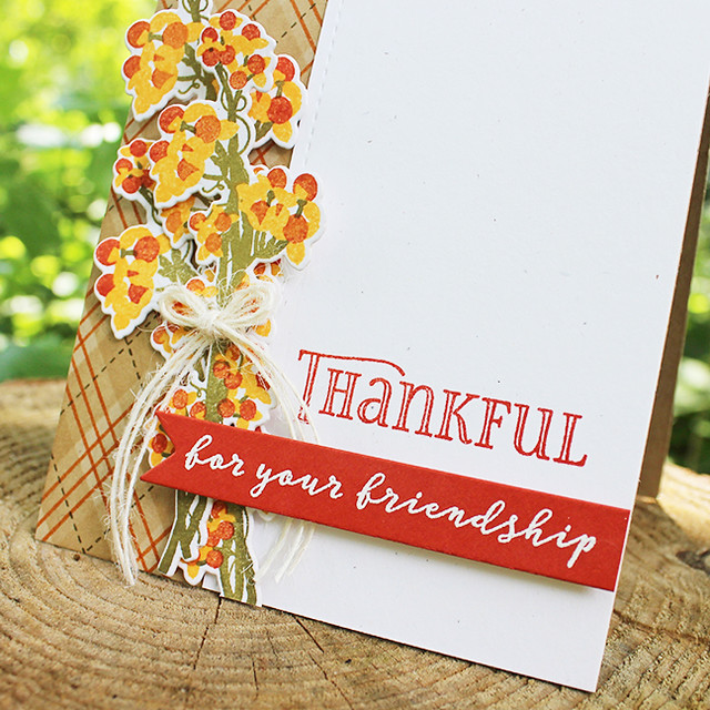 Thankful For Your Friendship Card 2