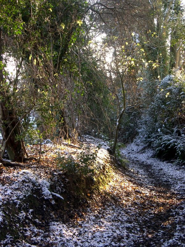 Greensand Way in Winter 1