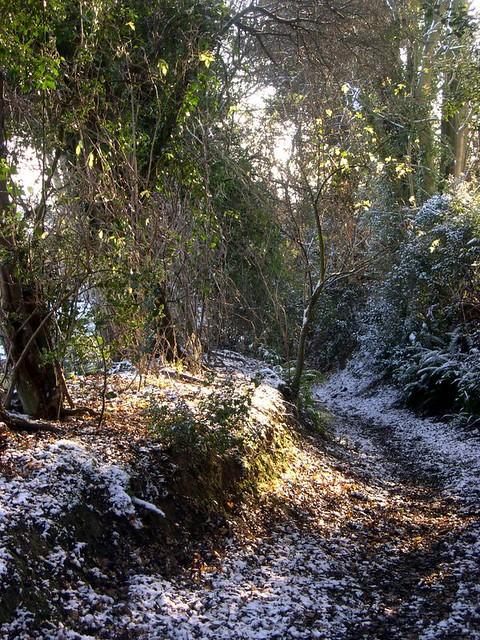 Greensand Way in Winter 1