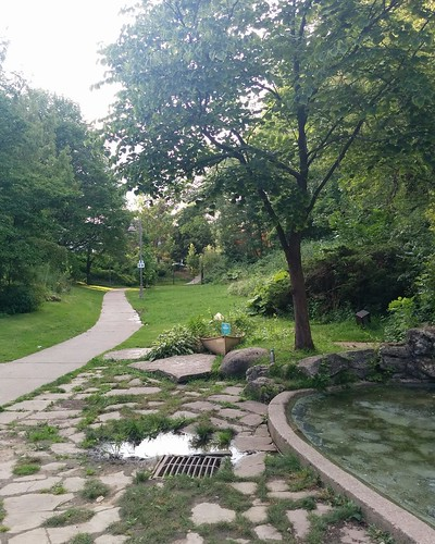 Winding path #toronto #parks #ravine #beaches #ivanforrestgardens  #waterfall #pond #path