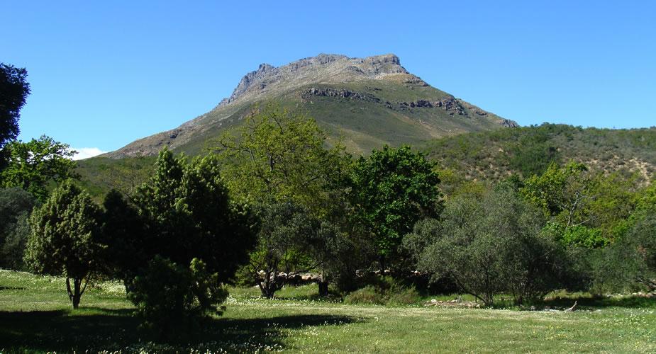 Wijn proeven in Stellenbosch, Zuid-Afrika, tips | Mooistestedentrips.nl