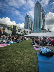 Yogis on the Grass