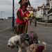 Dog walk Dog