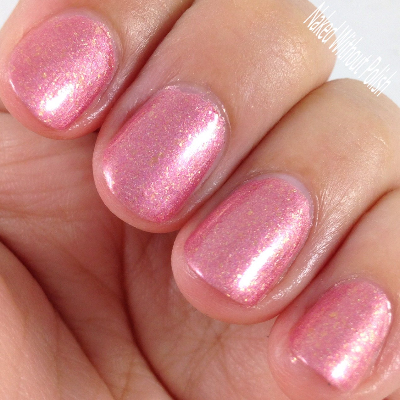 Turtle-Tootsie-Polishes-Beauty-School-Dropout-8