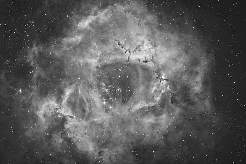 バラ星雲 The Rosette Nebula