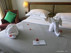 Towel Sculpture - Heritance Tea Factory Hotel Nuwara Eliya Sri Lanka