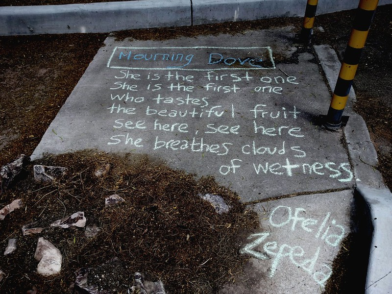 Ofelia Zepeda poem Mourning Dove chalked in the Malvern Plaza. (Urban Poetry Pollinators)
