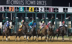 5 August 2017, Charles Town Races (75)