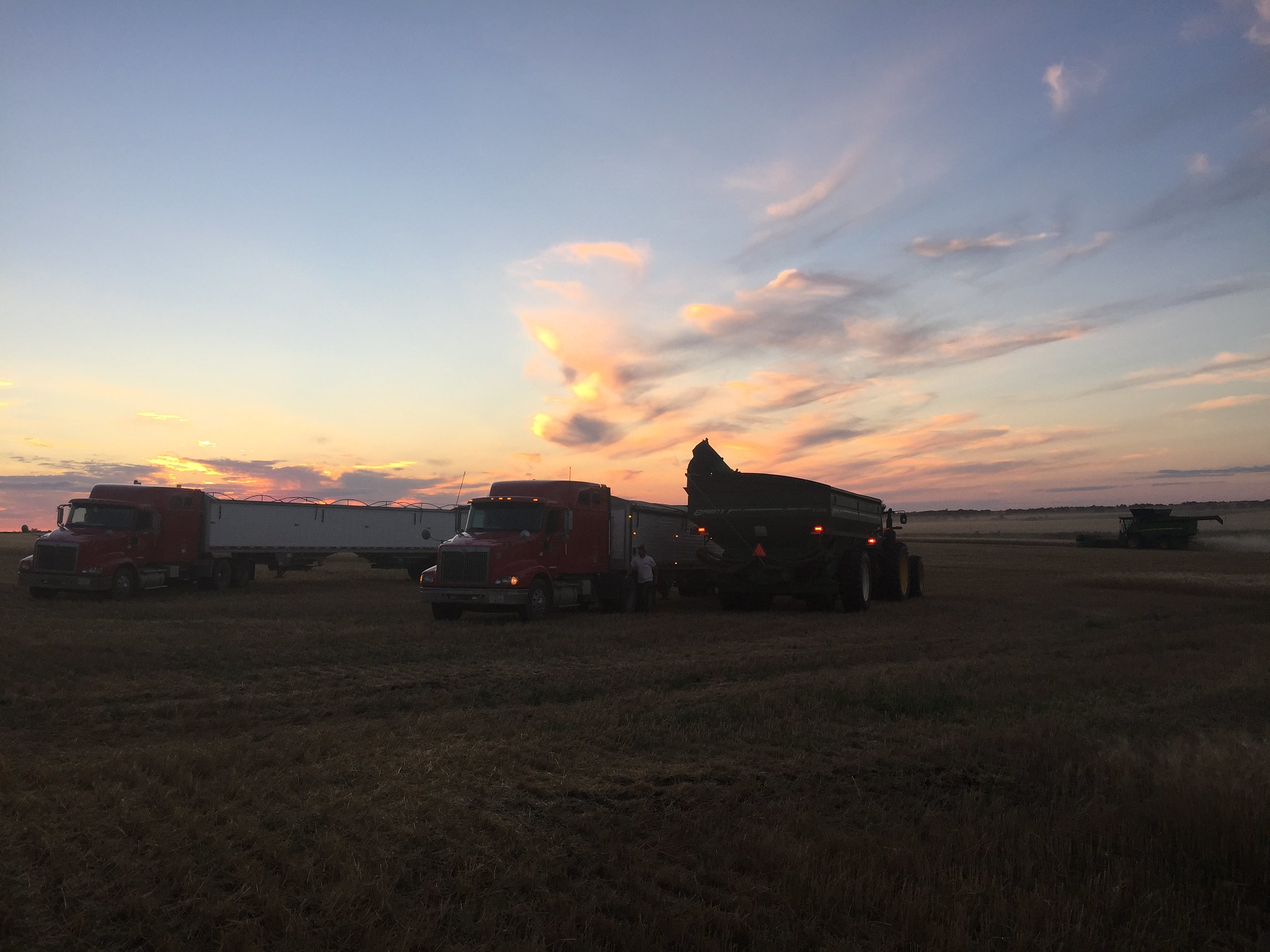 High Plains Harvesting 2017 (Ryan)