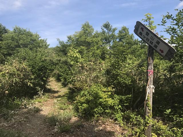鷲ヶ岳 桑ヶ谷ルート 登山道 案内板