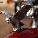 KDD Alcarria Racing - 3 Septiembre