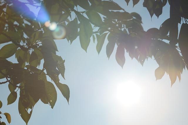 Yeah! Sunshine!!