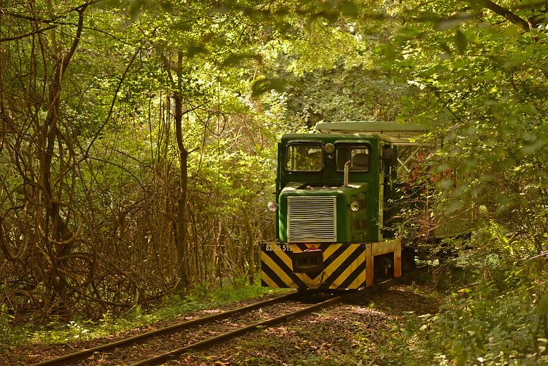 Train ride in the Börzsöny