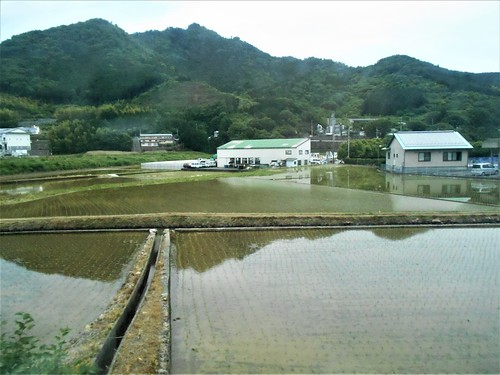 jp-Matsuyama-uwajima (11)