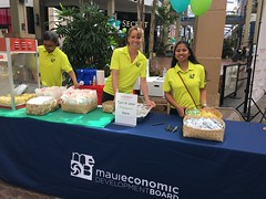 Maui Electric at the EV Showcase - August 12, 2017: Mahalo Maui Economic Development Board!