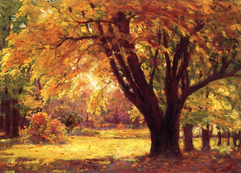 Autumn Sunlight by John F. Carlson (1875 - 1945)