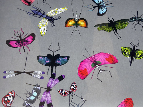 All sorts of pretty flying bugs on a piece of wallpaper on display in Amsterdam, Holland