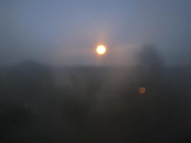 橋上觀月 (3)