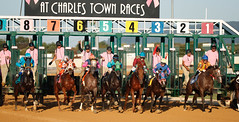 23 September 2017 -Charles Town Races (54)