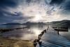 Morning Glory by Michael Espeland