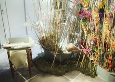 🎼Bathing Beauty🎶 A little privacy please..😉 #bathing #inthebathtub #vintagestyle #bloemkunst #flowerart #kasteelgroeneveld #castle #flower #flowers #flowerphotography #nature #natuur #lovephotography #photographer #photography #fo