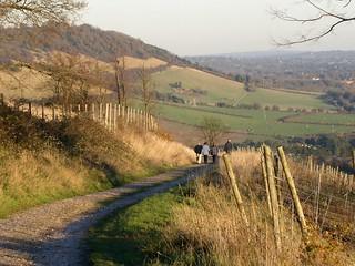 Approaching Boxhill