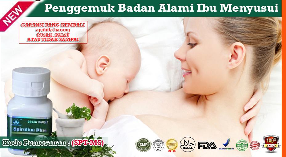 Obat Penggemuk Badan Untuk Ibu Menyusui Di Apotik