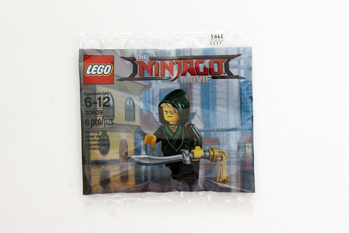The LEGO Ninjago Movie Lloyd (30609)