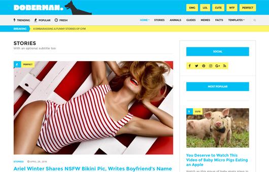 Doberman v1.1 – Viral Theme for WordPress