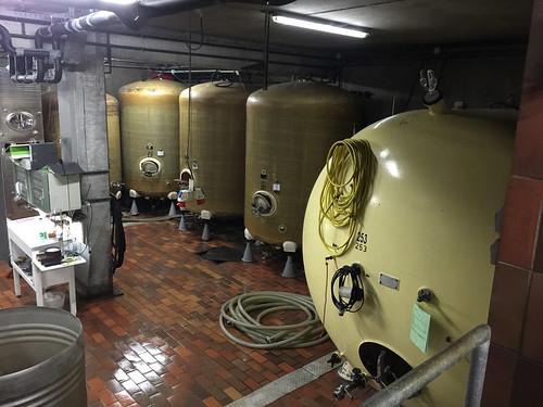 17 - Im Weinkeller - Weingut Allendorf