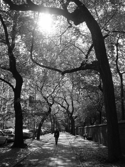 Walking in New York, Sony DSC-W220