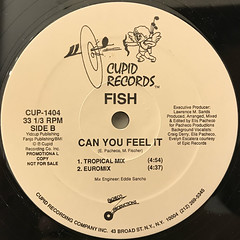 FISH:CAN YOU FEEL IT(LABEL SIDE-B)