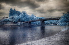 bridge infrared