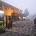 濃霧中的茶田35號