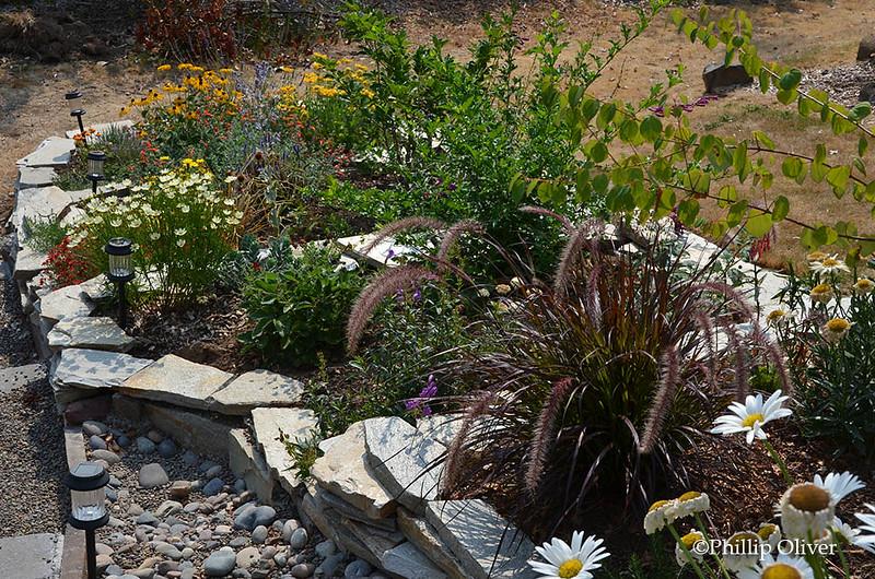 terraced-garden-5