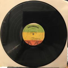 BUNNY WAILER:DUBD'SCO VOL.2(RECORD SIDE-B)
