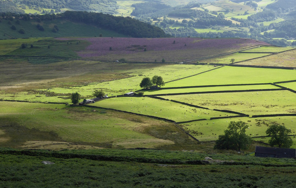 Sunlight in the valley Sheffield to Bamford walk