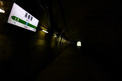 湯檜曽駅の下りホームは新清水トンネルを入ってすぐの所にある。次の土合駅は「もぐら駅」として知られる
