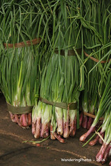 A Bunch of Spring Onions - Wholesale Fruit & Vegetable Market - Dambulla Sri Lanka