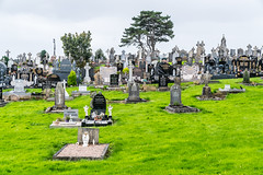 BOHERMORE VICTORIAN CEMETERY IN GALWAY [RESTING PLACE OF THE FAMOUS AND NOT SO FAMOUS]-1324556