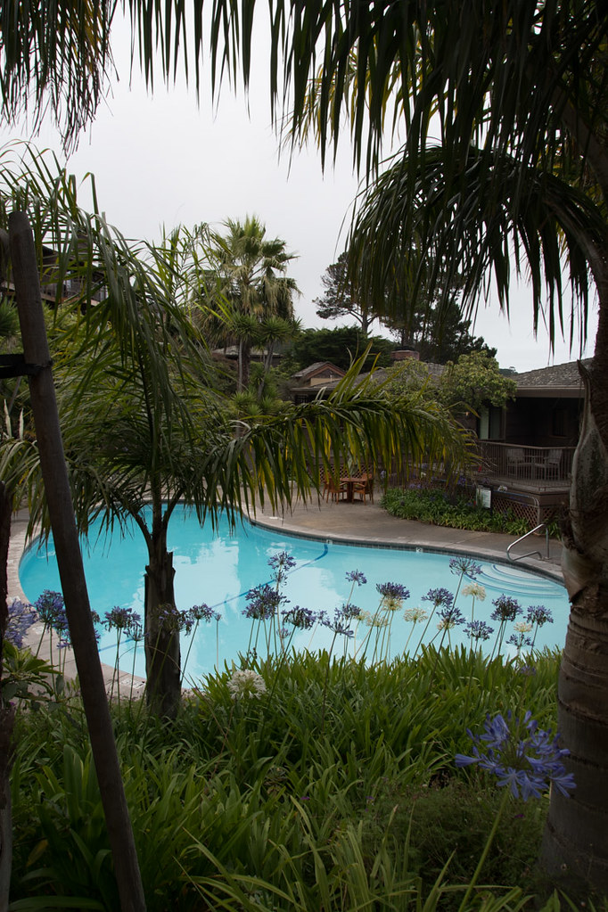 Pool at Hyatt Carmel Highlands
