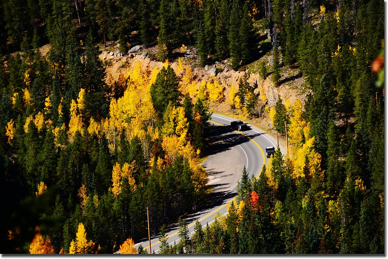 Fall colors, Mount Evans Scenic Byway, Colorado (38)