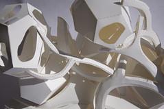 08_Princeton_SoA_Fall15_Baurmann_IDouglas_Paper_model