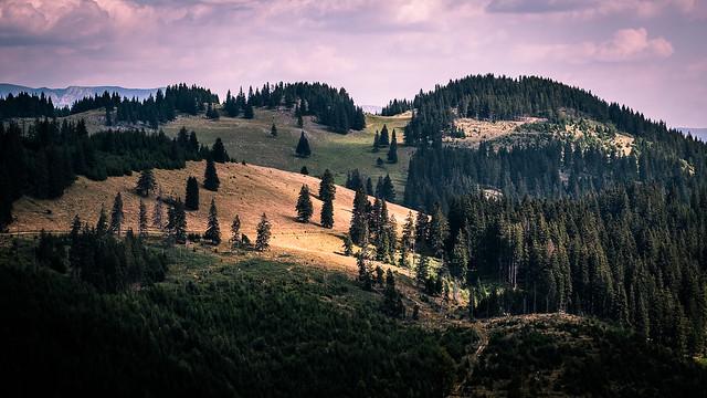 Piatra Craiului, Southern Carpathians - Romania - Landscape photography