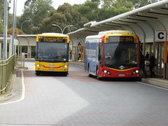 TTP Interchange - Scania buses of different ages