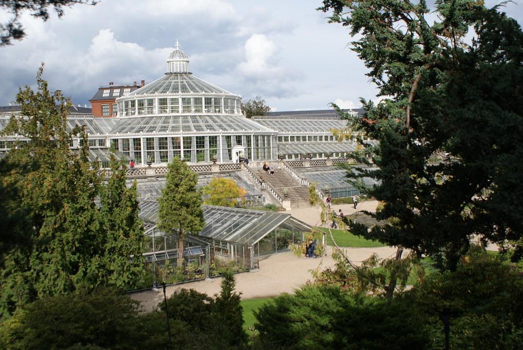 Serres tropicales du jardin botanique de Copenhague.