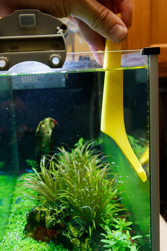 cleaning aquarium glass with hardware store blade holder