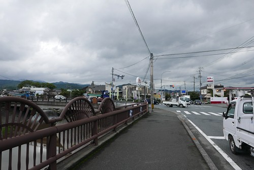 hatomameya001