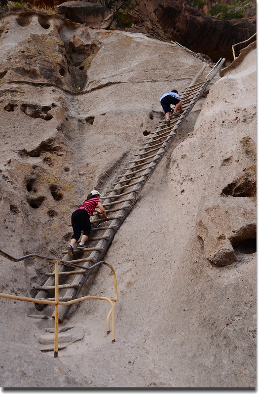 Ladder to Alcove House (2)